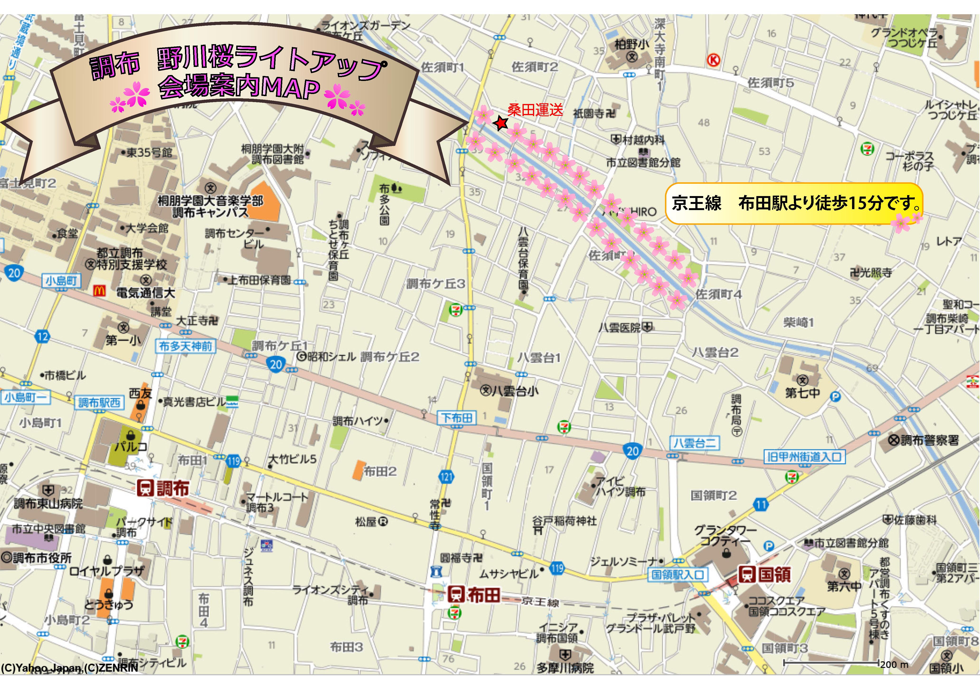 桜MAP全体